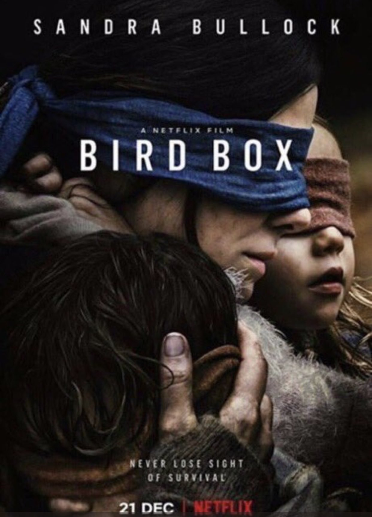 ჩიტის ყუთი